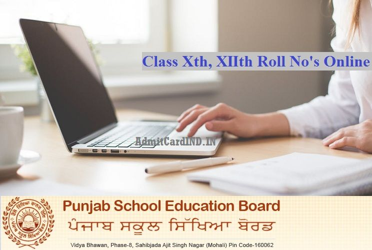 PSEB Roll No 2019 - pseb ac in Class 10th 12th Admit Card Download